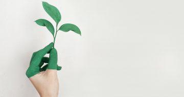 RSE / Développement durable
